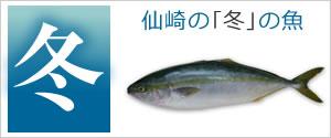 仙崎の冬の魚