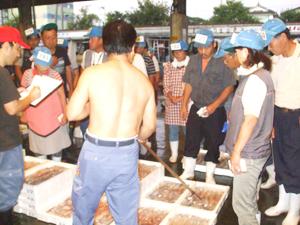 仙崎魚市場のセリの様子